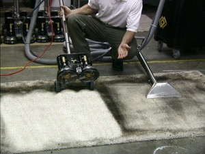carpet cleaning with rotovac