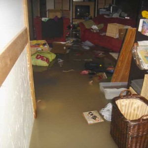 Flood Cleanup / Water Damage